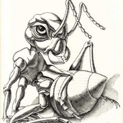 The_ant__23_x_30_sm_ink__paper_card