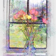 Window__of__spring_card