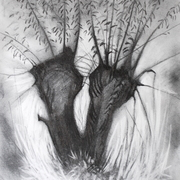 Baston_fen_drawing_charcoal_5b_pencil_and_graphite_powder_july_2010_card