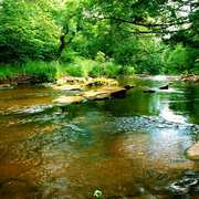River-derwent-for-artbreak_card