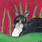 Newcatinthegrass_card