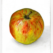 Apfel_card
