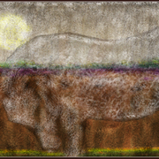 A_horse_in_the_country_card