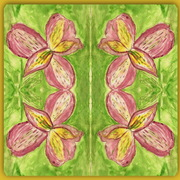 Lilies_done_with_ariel_001_mirror_2_-_4_lillies___border_card