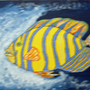 Blue_striped_fish_thumb