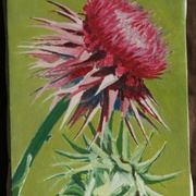 Bonnie_thistle_20x30_card
