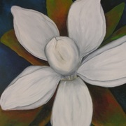 Antonio_cayanan-magnolia_bloom_2010_14x20_inches_oil_on_canvas_card