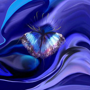 Blue_butterfly_card