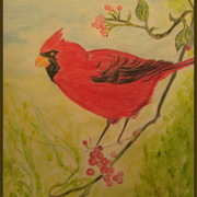 Img_8174_red_bird_12-04-10_crop___border_card