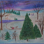 Img_8346_winter_scene__crop___blue_border_card