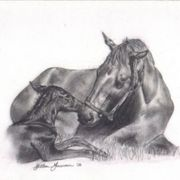 Mare___new_foal_3_card