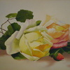 Roses_thumb