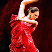 Flamenco_card