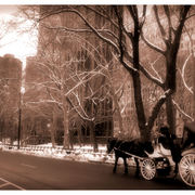 Cariage_in_nyc_2_card