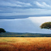 African_skies_no_flash_1__edited_thumb
