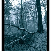 Untitled-1_card