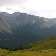 August_2008_-_rocky_mountain_national_park_-_07_card