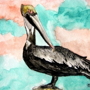 Pelican_bird_3_medium_card