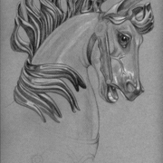Carousel_horse_head_card