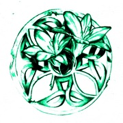 Celtic_lillies_12_card