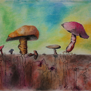 Mushroom1_card