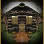 Img_1504_face_in_door_of_log_cabin_card