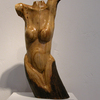 Female_in_oak_thumb