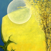 Supermoon_in_deeping_fen_card