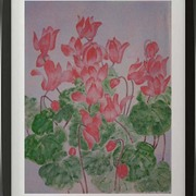 Florists_cyclamen_card