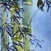 Bamboo_winter_card