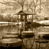 Japanese-prayer-room1-infrared-sepia-small_640__thumb