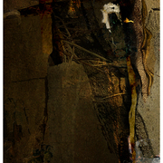Roots_woven_in_the_wall_of_mud_card