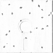 Ants_on_a_disc_card