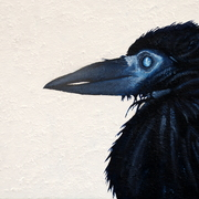 Enter_crow_-_oil___mixed_media_on_board_12x18inches_june_2011_card