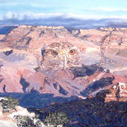 Grand_canyon_17x7_card