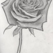 Shaded_rose_card