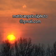 Matt_cangelosi_1015_card