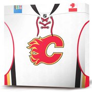 Calgary_flames_primary_jersey_white_card