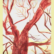 Tree_jc_jesus_christ_initials_3-30-11_001_more_colors___3_card