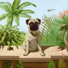 Pug_in_spiderland__web_thumb