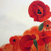 Amapolas-610x610_thumb