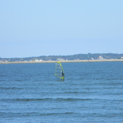 Windsurfer2011_card