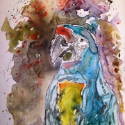 Macaw_parrot_yupo_painting_small_card