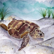 Sea_turtle_painting_2_small_card