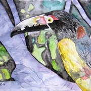 Toucan_bird_painting_small_card