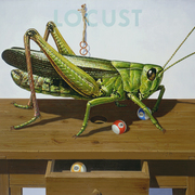Big_locust_is_putting_in
