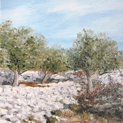 Irena_s_olive-trees_card