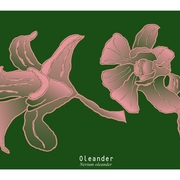 Oleander--2--fin--etsy_list_card
