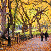 Central_park_de_manha_2canvas_adjust2ebay_web_card