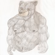 Black_bear_card